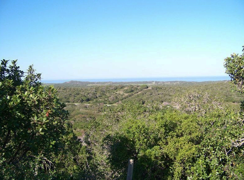 View of Sardinia Bay from Chelsea Conservancy