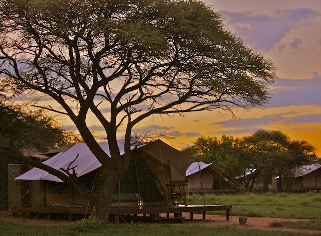 Mogwase Bush Camp