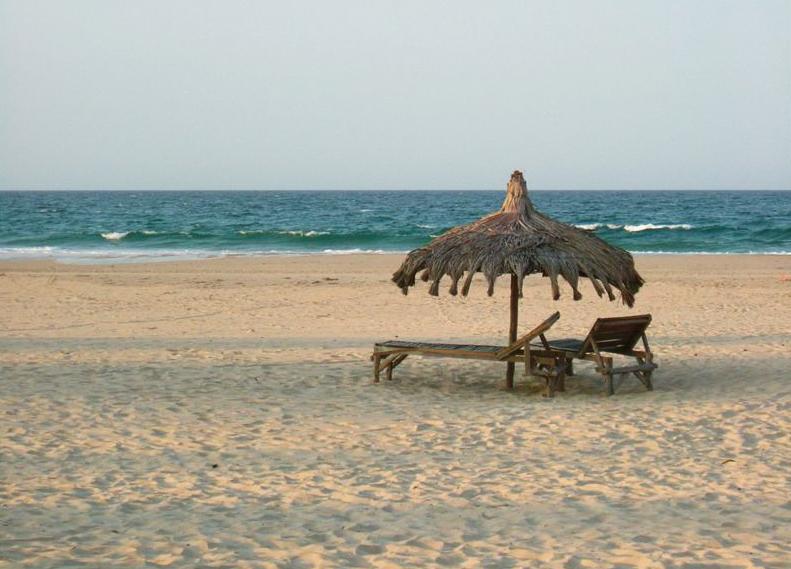 Praia da Barra Accommodation