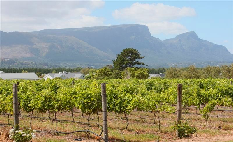 Steenberg Accommodation