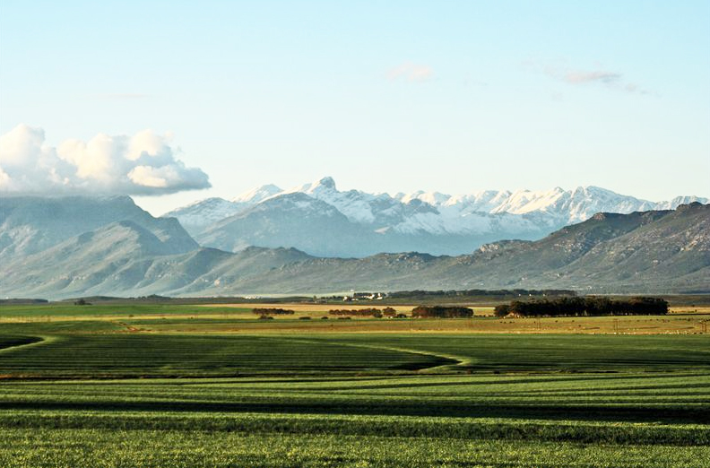 Elandskloof Mountains seen from Hermon farmlands