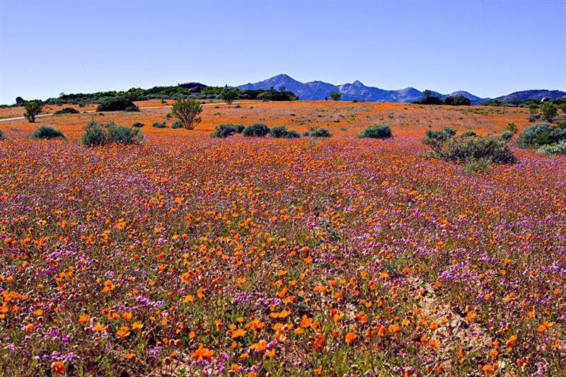 Namaqua National Park Accommodation