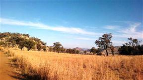 Protea Park Accommodation