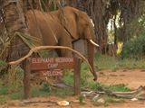 Samburu Accommodation