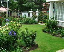 The well manicured garden.