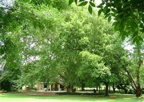 Mooivallei Park Accommodation