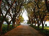Pretoria (Tshwane) and surrounds Accommodation