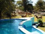 Ghanzi District Safari