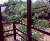 View from a log cabin