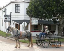 The horse and cart ride which operates in Bathurst, stops outside the Pig and Whistle Inn.