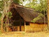 Copperbelt Province Safari