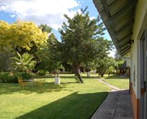 Garden view from outside the rooms