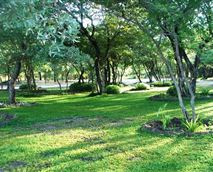 Lawns for camping