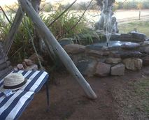 A rustic swing in the cool shade of an ancient Camelthorn Tree.