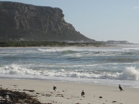 Elands Bay Beach