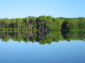 Pomene Nature Reserve
