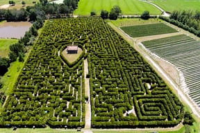 Explore the largest permanent hedge maze in the Southern Hemisphere!