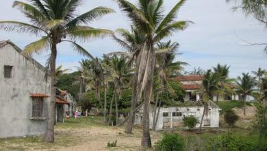 Things to do in Pomene Bay