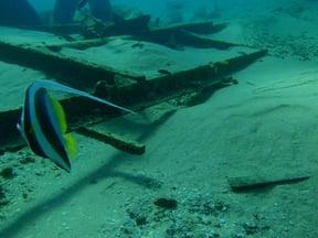 Pomene Artificial Reef