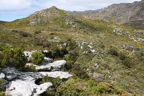 Silvermine Waterfall Walk