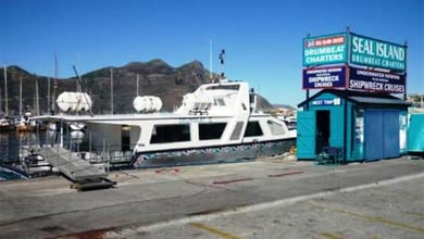 Things to do in Hout Bay