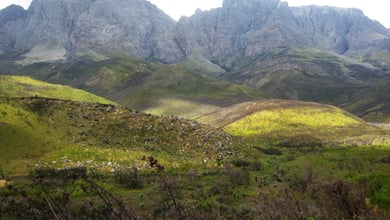 Things to do in Jonkershoek Nature Reserve