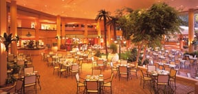 The Palm Terrace
