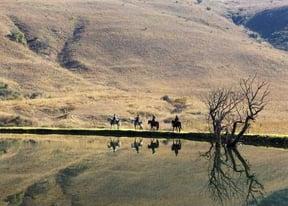 El Dorian Horse Riding Trail