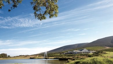 Things to do in Durbanville Hills