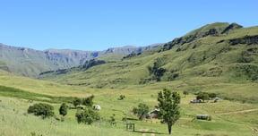 Lotheni Nature Reserve