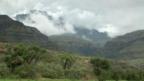 Monks Cowl Nature Reserve