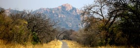 Amalinda Nature Reserve