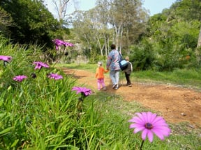 Settlers Park Nature Reserve
