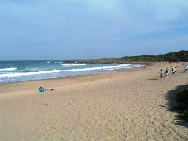 Ivy Beach