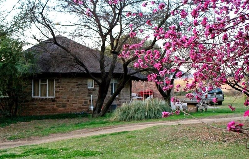 weekend getaway Aliwal North