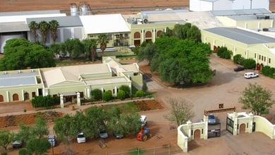 Things to do in Green Kalahari
