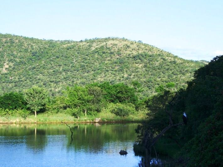Louw's Creek