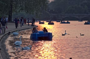 Hyde Park sunset