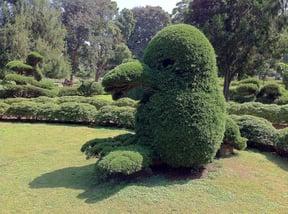 Lalbagh Botanical Gardens