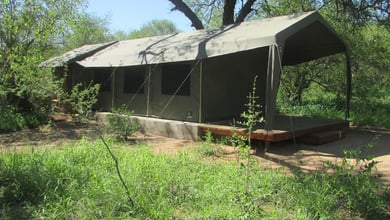 Mzsingitana Tented Camp  | Manyeleti Reserve Lodges