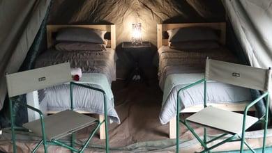 Kruger Park Tours | Lodges Skukuza