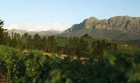 Diemersfontein Views