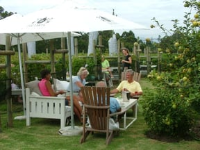 Bramon Restaurant: lunching in amongst the vines!