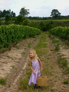 A family affair: Manon loves to help her dad in the vineyards