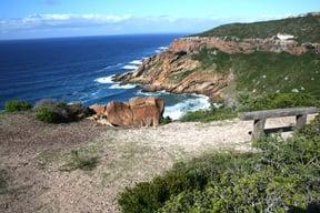 St Blaize Trail