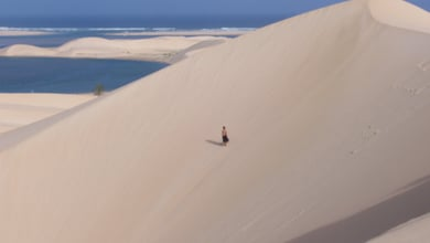 Things to do in Addo