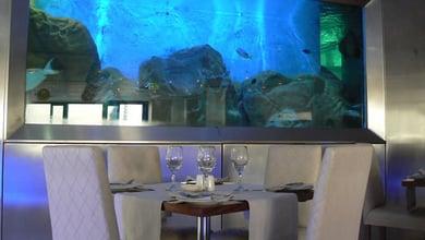 Restaurants in De Waterkant