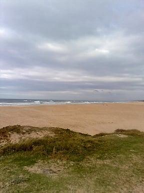 Beach at Maitland