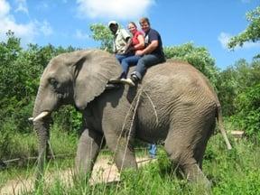 Short Elephant back rides