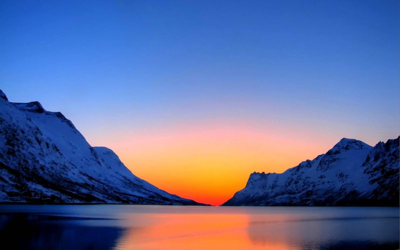 Arctic Wilds